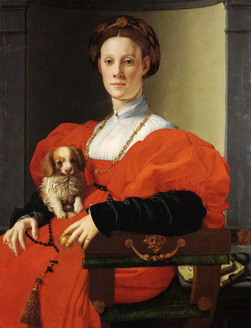 Lady in Red (Lady with a lapdog)  ~Agnolo Bronzino   c. 1530 to 1535